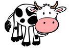 cartoon cow