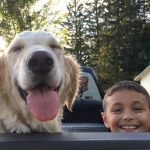 Boy and golden retriever in the back of a truck