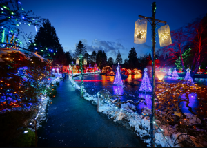 A park decorated with Christmas lights with a walk way